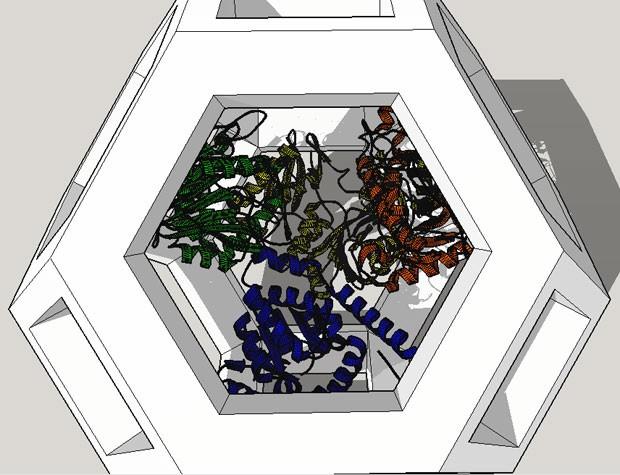 Desenho criado pelos estudantes da USP mostra como seria, na prática, uma 'nanoestrutura' feita de DNA e capaz de acomodar material biológico para otimizar a produção de fármacos e outros produtos (Foto: Divulgação/Protomatos)