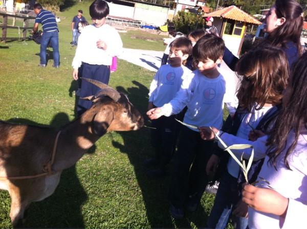 Pesquisadora de Florianópolis descobriu que as crianças aprendem mais e são mais criativas no ambiente natural (Foto: Divulgação/RBS TV)