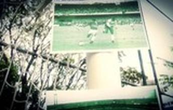 BLOG: Palmeiras x Corinthians: 23 anos depois, um novo 12 de junho