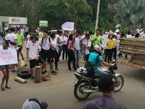 Alunos do Ifes de Santa Teresa fecharam a rodovia (Foto: Internauta)