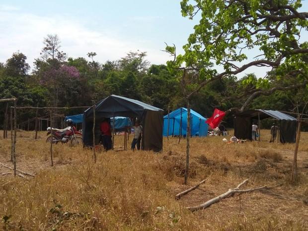 Integrantes do Movimento Sem-Terra montam barracas em fazenda (Foto: Antônio Ferreira/ MST)