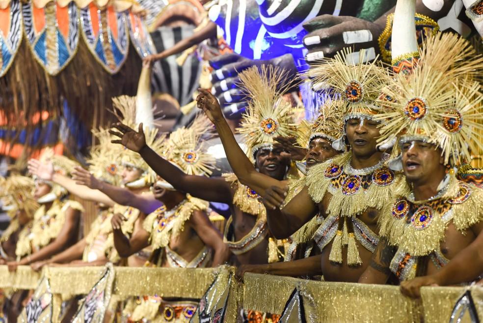 Escola de samba foi a quarta a desfilar na madrugada de sexta-feira para sábado (Foto: Flávio Moraes/G1)