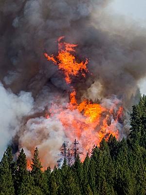 Incendio California EUA  (Foto: Noah Berger/Reuters)