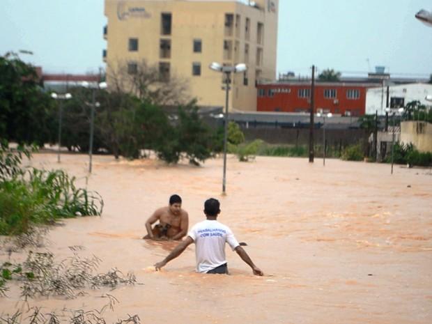 Animais estavam presos em quintais durante enchente (Foto: Pâmela Fernandes/ G1)