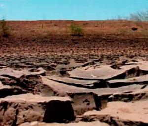 Seca assola 139 município do RN (Foto: Reprodução/Inter TV Cabugi)