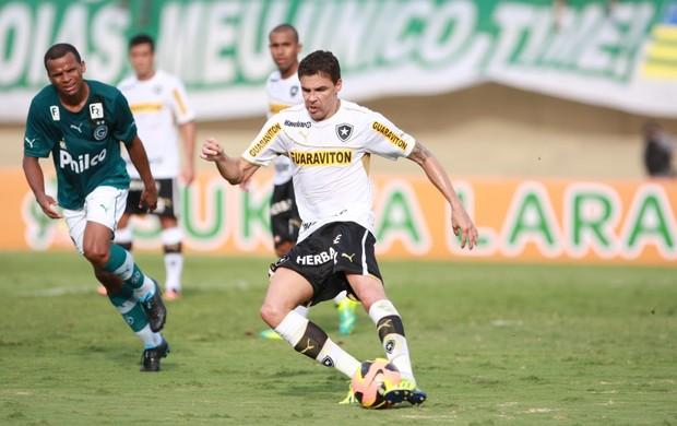 Goiás x Botafogo no Serra Dourada, em Goiânia (Foto: Cristiano Borges/O Popular)