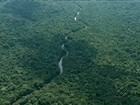 Marinha reforça buscas por bimotor desaparecido no sudoeste do Pará