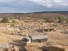 Urca consegue repatriação de fósseis contrabandeados do Ceará
