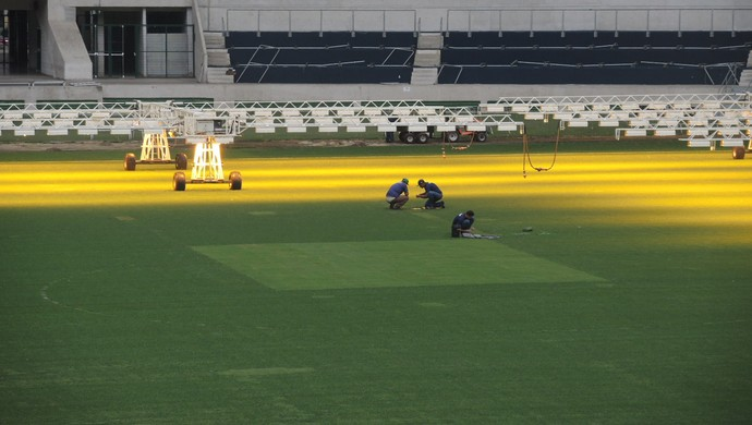 Arena do Palmeiras gramado (Foto: Felipe Zito)