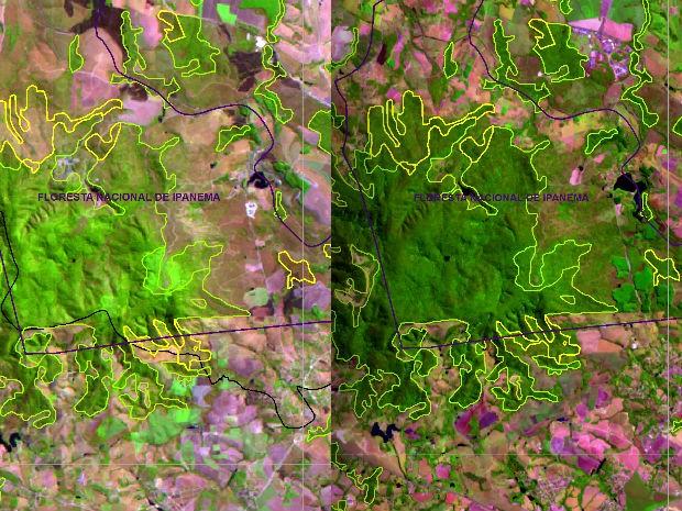 Imagem de satélite de Iperó em 1985 e 2015 (Foto: Atlas dos Remanescentes Florestais da Mata Atlântica)