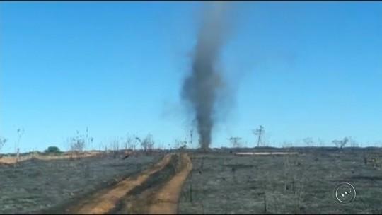 Defesa Civil registra redemoinho em área de vegetação queimada