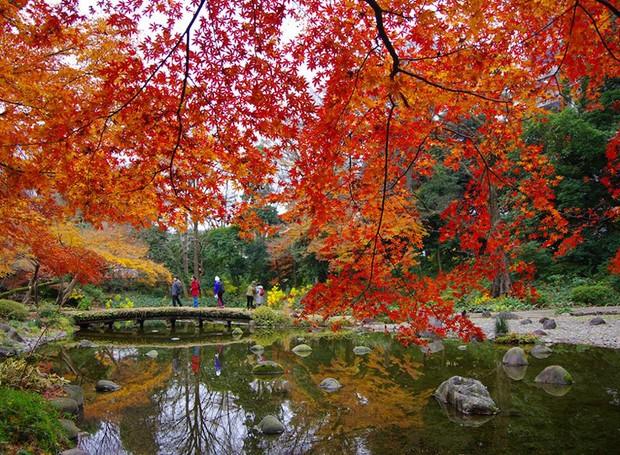 Koishikawa Korakuen – Tóquio, Japão (Foto: Reprodução / Facebook)