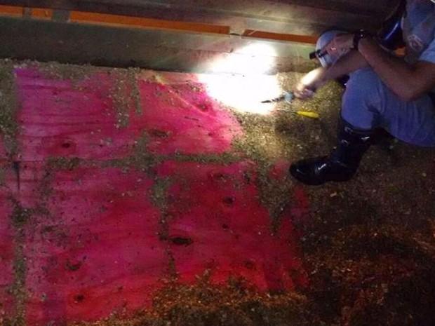 Droga estava escondida em fundo falso de caminhão (Foto: Polícia Rodoviária/Divulgação)
