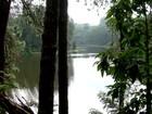 ONG quer transparência em parques de SP concedidos à iniciativa privada