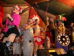 Belém Carnaval com Jambu 2014 (Foto: Cristino Martins/O Liberal)