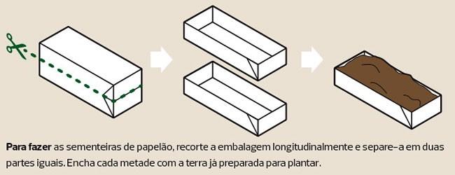 como_fazer_sementeira_papelao (Foto:  )