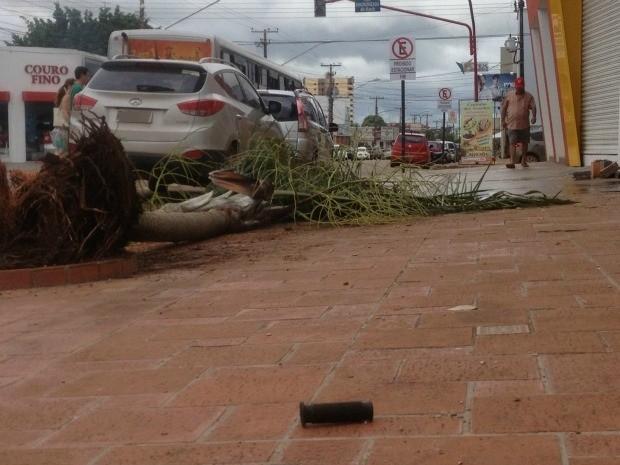 Acessório da bicicleta da vítima na calçada (Foto: Vanessa Vasconcelos/G1)