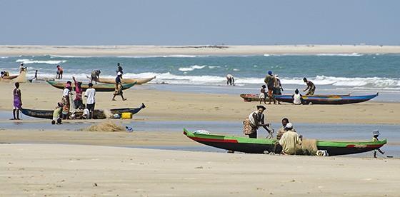 Canoas chegam à praia de Betania para descarregar o resultado da pescaria. (Foto: © Haroldo Castro/Época)
