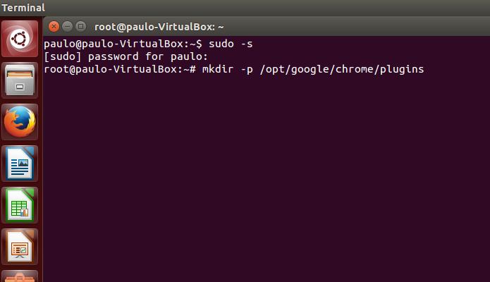 Crie uma pasta para o plugin no Chrome (Foto: Reprodução/Paulo Alves)