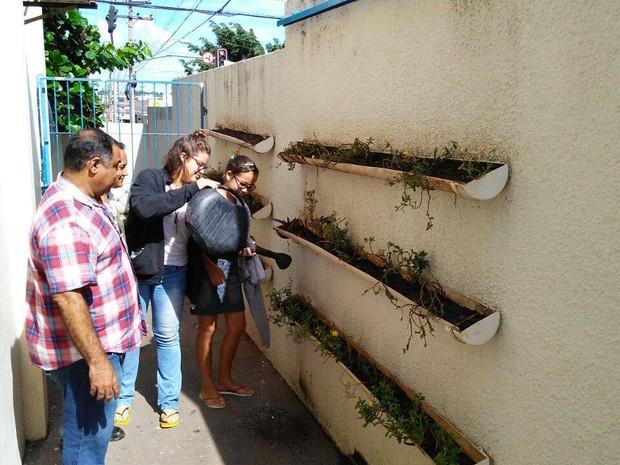 Estudantes vão usar água para regar hortas e jardins (Foto: Manoel Barbosa/Divulgação)