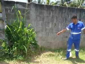 Funcionário da Cesan aponta ligação clandestina (Foto: Divulgação/ Cesan)