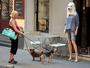 Manequim com máscara de cachorro deixa cães atônitos em rua na França