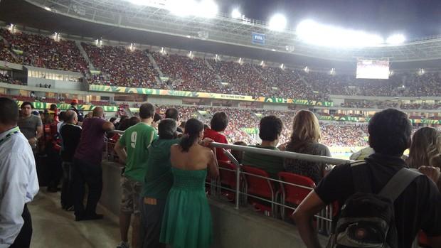 Torcedores em pé Arena Pernambuco (Foto: Franco Benites)