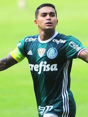 Palmeiras x Sport dudu (Foto: Marcos Ribolli)