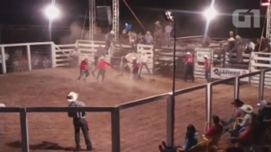 Peão morre após ser pisoteado por touro em RO; vídeo