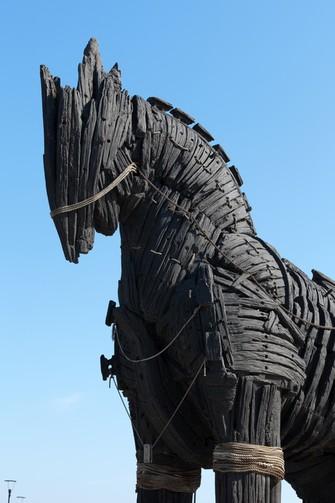 Réplica de Cavalo de Troia feira em madeira (Foto: Pond5)