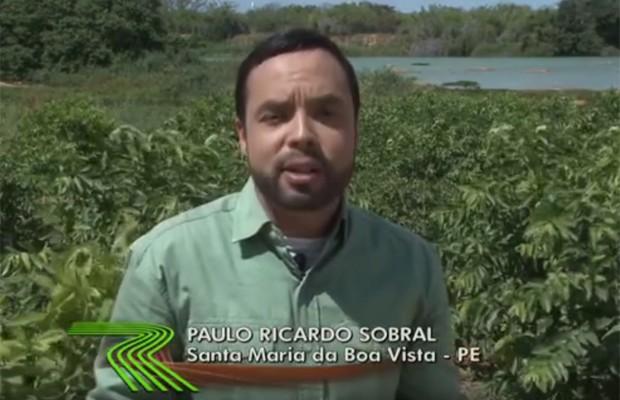Paulo Ricarso Sobral gravou matéria sobre cuidados com os pés de goiabas (Foto: Reprodução/TV Grande Rio)