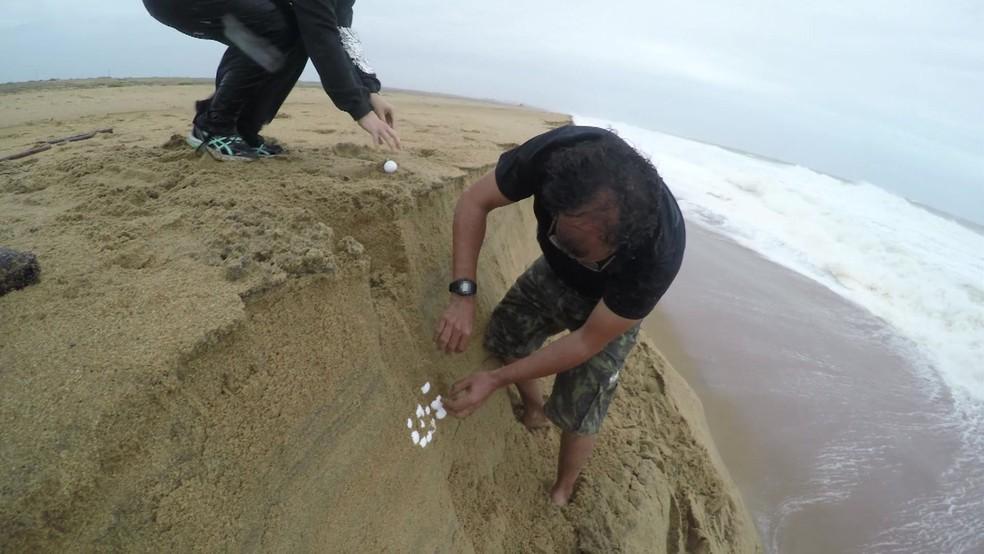 Equipe registrou resgate dramático de ninhos de tartaruga em temporal (Foto: Reprodução)