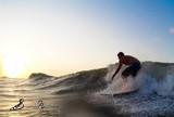 �ltima etapa do Circuito Maranhense de Surf agita final de semana, em SL