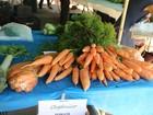 Parque em Sorocaba recebe feira de produtos orgânicos