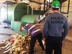 PF destrói meia tonelada de drogas apreendidas no Oeste potiguar