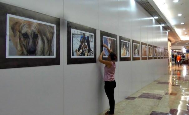 Exposição Casa da Tutti (Foto: Divulgação)
