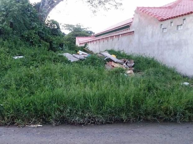Terrenos abandonados são apontados como causa da aparição de animais em Mongaguá, SP (Foto: Arquivo Pessoal)