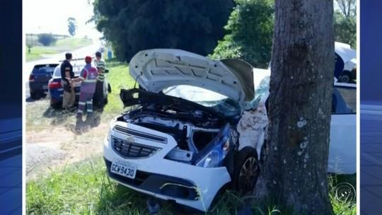 Motorista fica ferido após bater em árvore em rodovia de Getulina