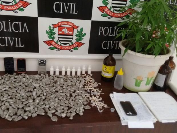 Operação apreendeu porções de drogas e pé de maconha (Foto: Divulgação/Polícia Civil)