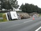 Caminhão com mil sacos de cimento tomba em canteiro central da PR-151