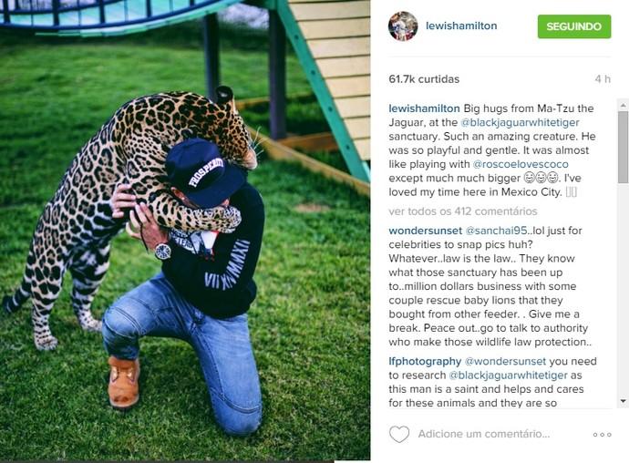 Lewis Hamilton posta foto com jaguar (Foto: Reprodução/Instagram)