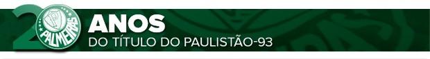 header 20 anos do título paulistão 93  Palmeiras (Foto: arte esporte)