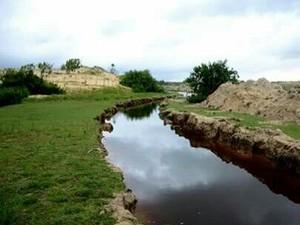 Amigos conseguiram licença junto a Semar para relizar intervenção na Lagoa do Portinho, no Piauí (Foto: Tibério Nunes/Arquivo Pessoal)