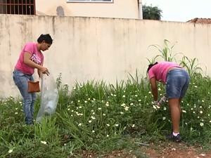 Ações deste sábado foi no bairro Floresta (Foto: Reprodução/ TV Tapajós)