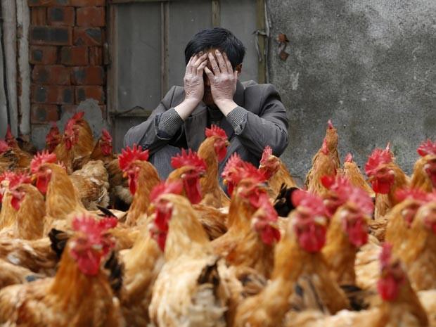 Transmissão do vírus H7N9 pode não ser apenas pelas aves (Foto: Reuters/William Hong)