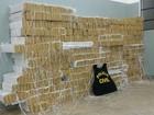 Polícia encontra 753 kg de droga em banco e porta-malas de carro em MT