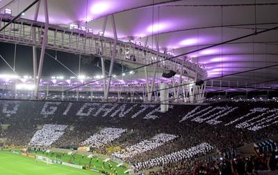 mosaico torcida Botafogo maracanã (Foto: Fred Huber)
