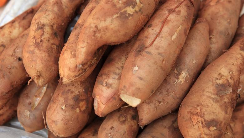 batata-yacon (Foto: Thinkstock)