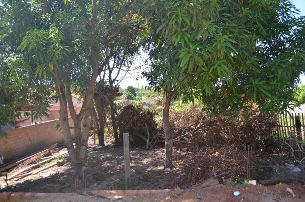Terreno no Bairro Conjunto Halley (Foto: Magda Oliveira/G1)