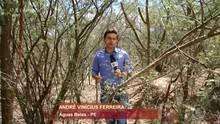 Índios da tribo Funi-ô participam do Encontro com Fátima Bernardes (Reprodução/ TV Asa Branca)